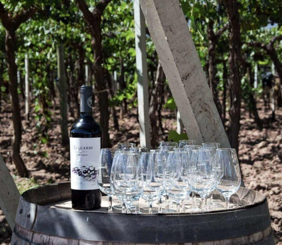 things to do in Mendoza