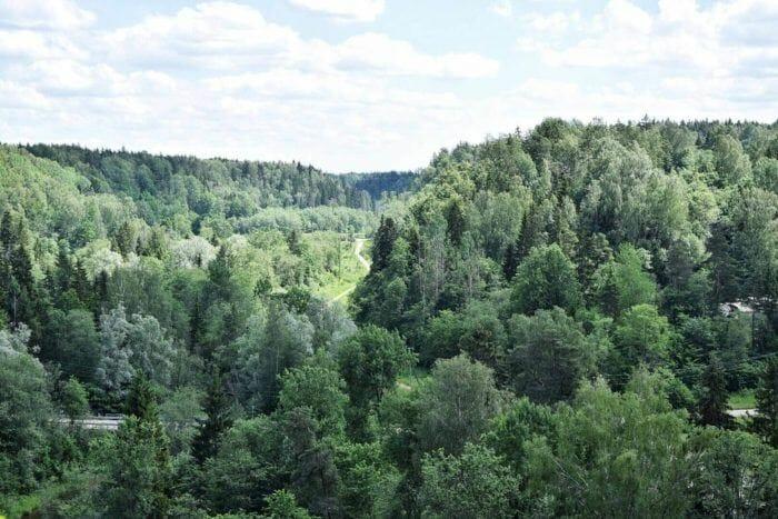 views of Gauja National Park