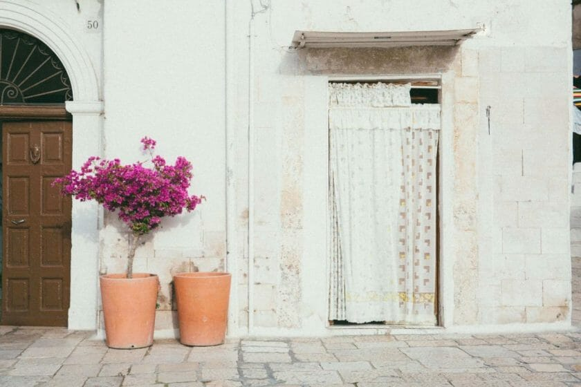 things to do in Bari