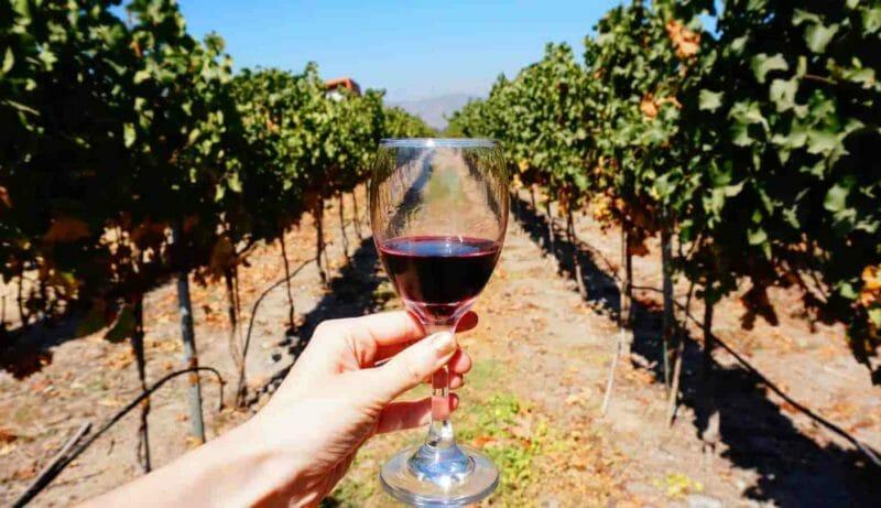 valparaiso chilean wine