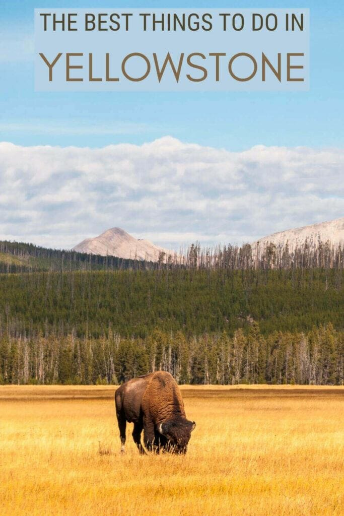 Discover the best things to do in Yellowstone - via @clautavani