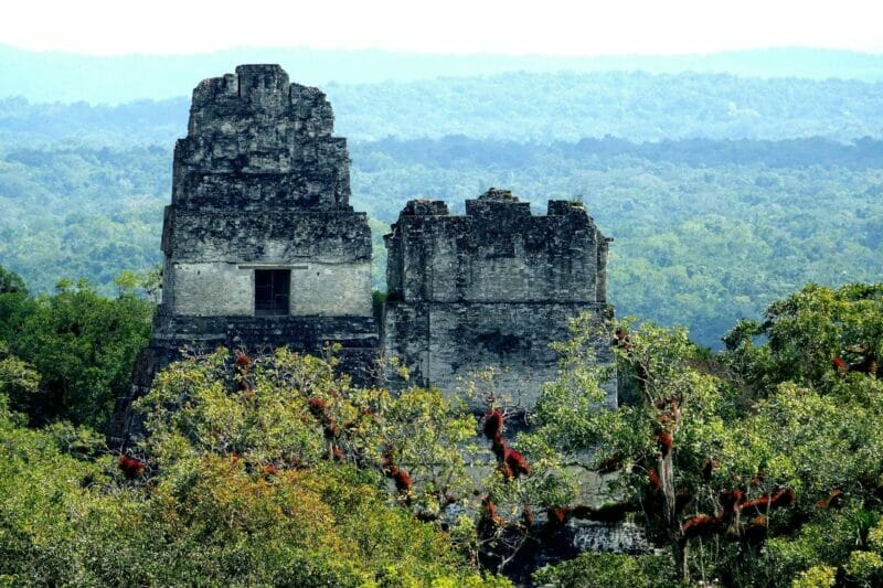 things to do in Guatemala Tikal