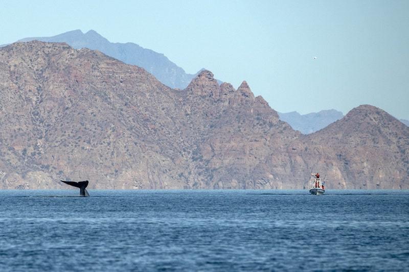 Bahia de Loreto Baja California