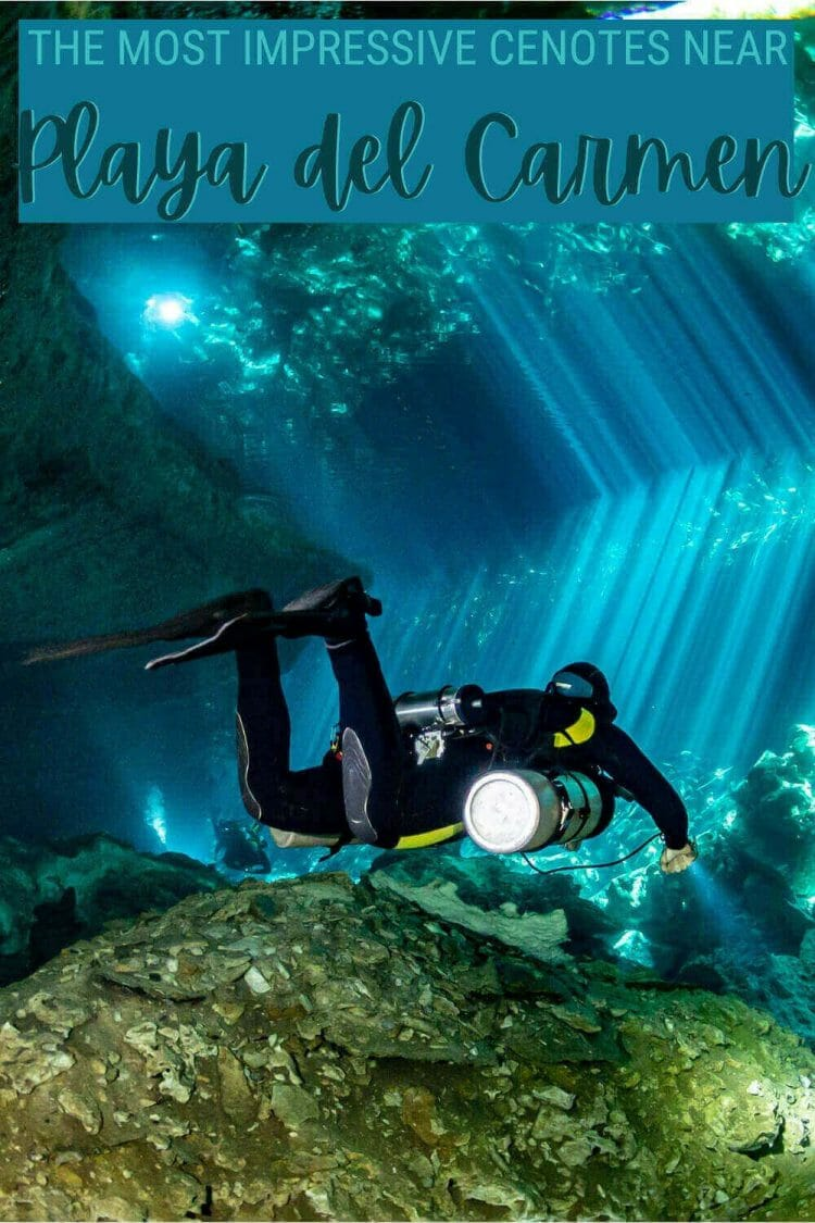 Discover the best cenotes near Playa del Carmen - via @clautavani